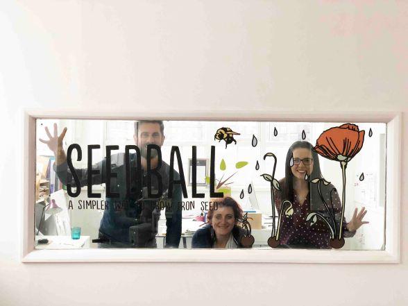 small-space-wildflowers-seedball-2