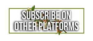 Subscribe on other platforms 2
