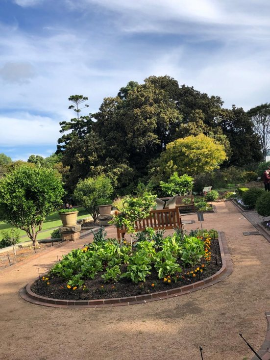 sydney-royal-botanical-garden-1