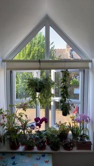 balcony-and-windowsill-gardening-16