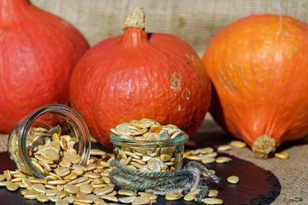 pumpkin-seeds-1738174_640